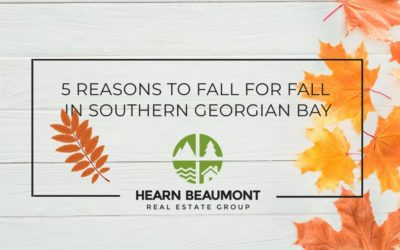 5 Reasons to Fall for Fall in South Georgian Bay